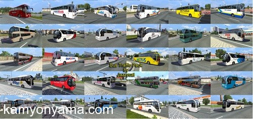 trafik_otobüs