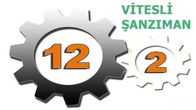 12x2_vitesli_sanziman