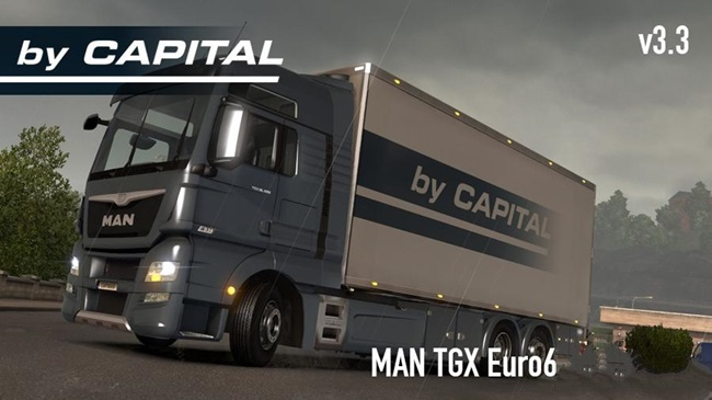 man-tgx-euro-6-kamyon